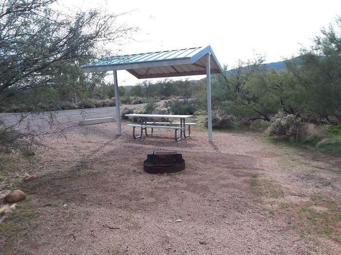 Campsite 55 at Cholla CampgroundCampsite 55, Cholla Campground