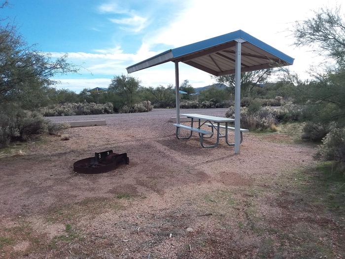 Campsite 55Campsite 55, Cholla Campground