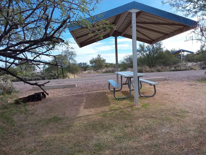 Campsite 57 at Cholla Campground with a picnic table, fire ring, shade structure, and parking.