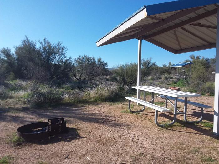 Campsite 59 at Cholla Campground with a picnic table, fire ring, shade structure, and parking.