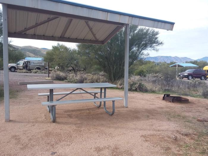 Campsite 61 at Cholla Campground with a picnic table, fire ring, shade structure, and parking.