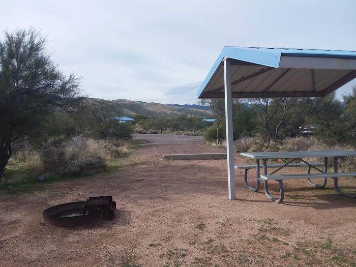 Campsite 65, Buckhorn LoopCholla Campground