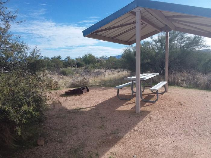 Campsite 67 at Cholla Campground with a picnic table, fire ring, shade structure, and parking.
