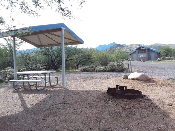 Campsite 75 at Cholla Campground with a picnic table, fire ring, shade structure, and parking.