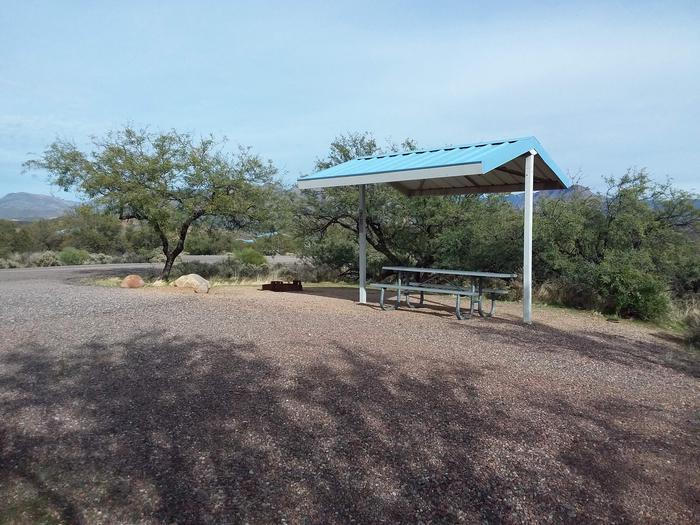 Campsite 75 at Cholla CampgroundCampsite 75, Cholla Campground