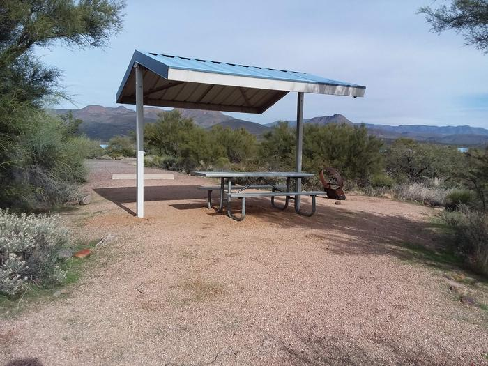 Campsite 77 at Cholla Campground with a picnic table, fire ring, shade structure, and parking.