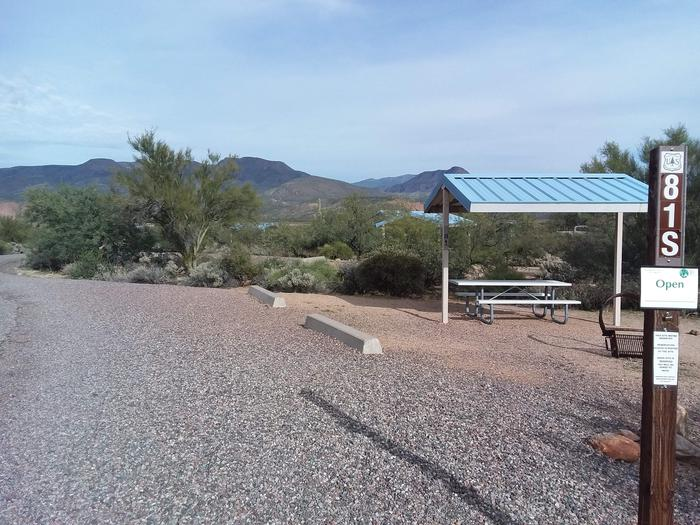 Campsite 81 at Cholla Campground with a picnic table, fire ring, shade structure, and parking.