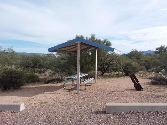 Campsite 81 at Cholla CampgroundCampsite 81, Cholla Campground