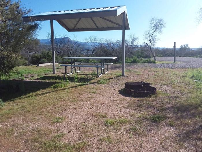 Campsite 91 at Cholla Campground with a picnic table, fire ring, shade structure, and parking.