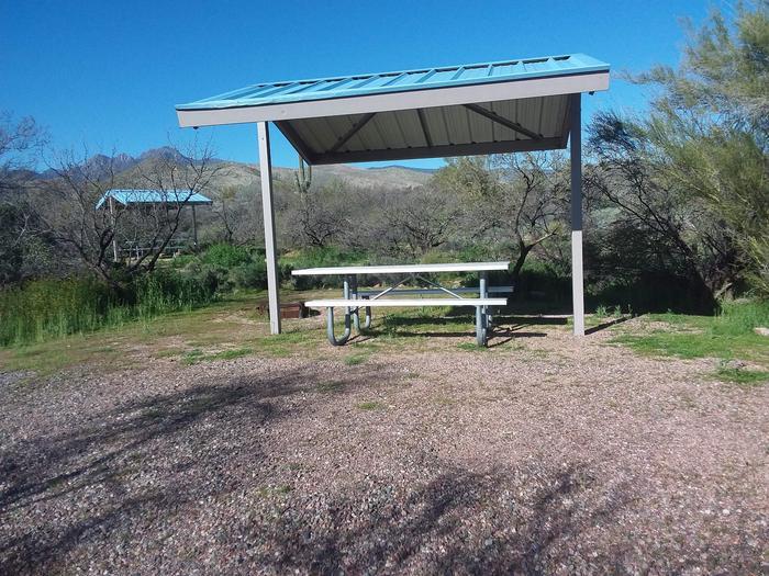 Campsite 91 at Cholla CampgroundCampsite 91, Cholla Campground