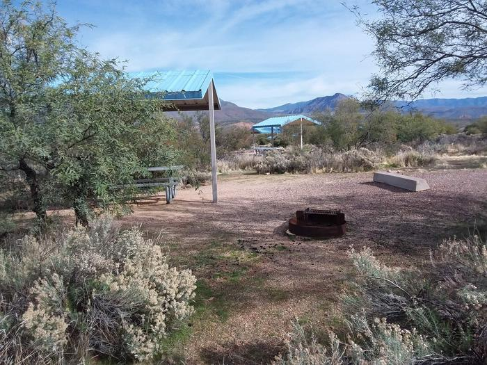 Campsite 163, Cane Loop with a picnic table, fire ring, shade structure, and parking