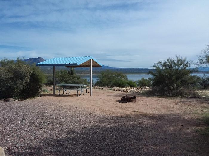 Campsite 169, Cane Loop with a picnic table, fire ring, shade structure, and parking.