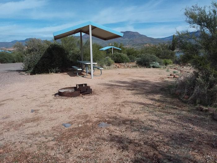 Campsite 169, Cane LoopCholla Campground