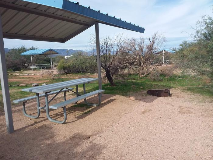 Campsite 171, Cane Loop with a picnic table, fire ring, shade structure, and parking.