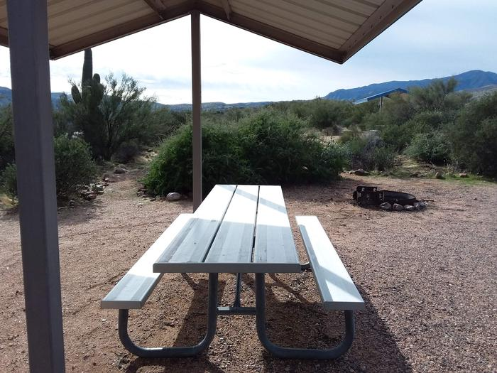 Site 172 with a picnic table, fire ring, shade structure, and parking.