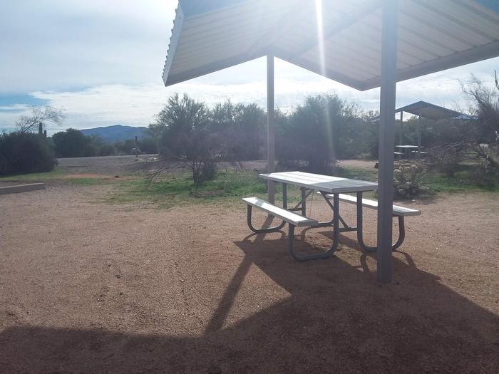 Campsite 173, Cane LoopCholla Campground