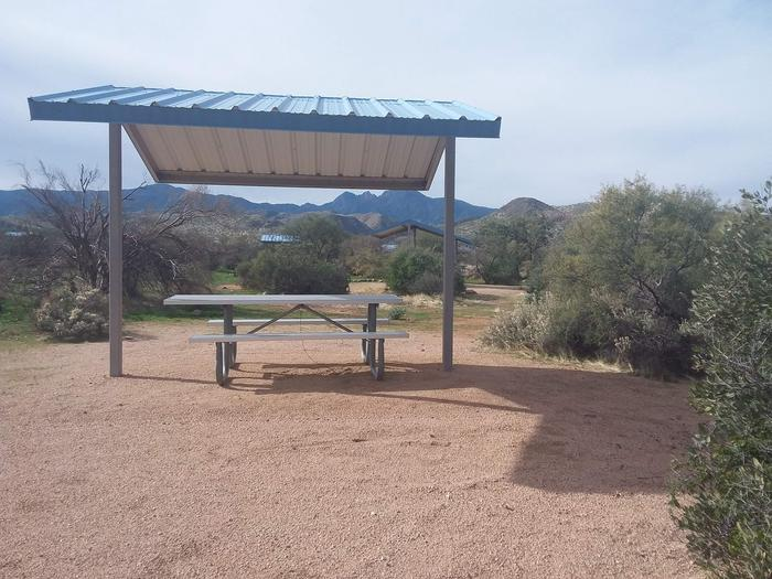Campsite 173Cholla Campground