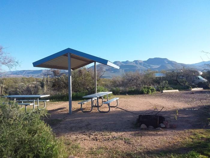 Campsite 179, Cane LoopCholla Campground
