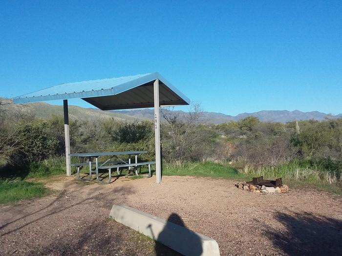 Campsite 181, Cane Loop with a picnic table, fire ring, shade structure, and parking.