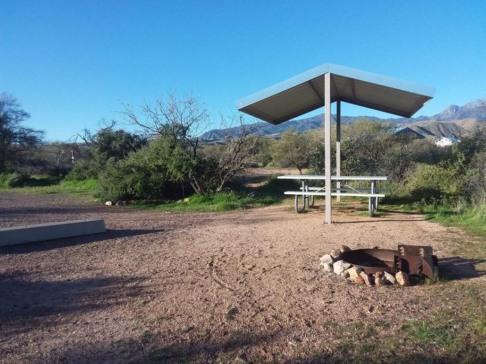 Campsite 181, Cane Loop with a picnic table, fire ring, shade structure, and parkingCampsite 181, Cane Loop with a picnic table, fire ring, shade structure, and parking.