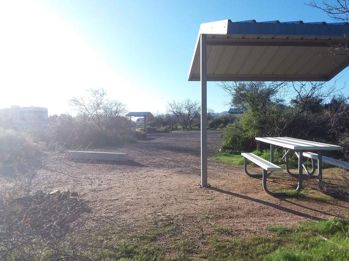 Campsite 181Cholla Campground