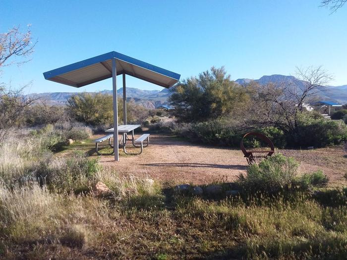 Campsite 185, Cane Loop with a picnic table, fire ring, shade structure, and parking.