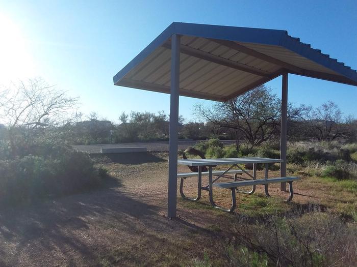 Campsite 185, Cane LoopCholla Campground