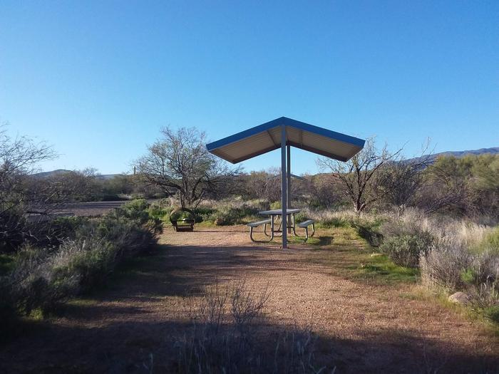 Campsite 185Cholla Campground