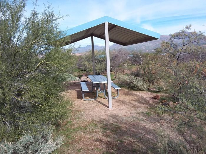 Campsite 187, Cane Loop with a picnic table, fire ring, shade structure, and parking.