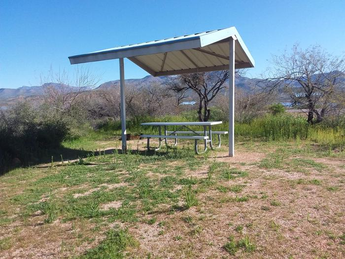 Site T8 with a picnic table, fire ring, shade structure, and parking.