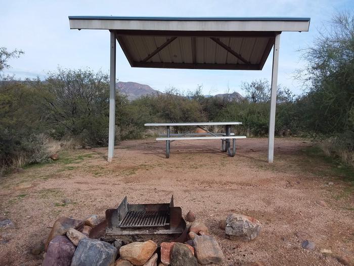 Campsite T9Campsite T9, Cholla Campground