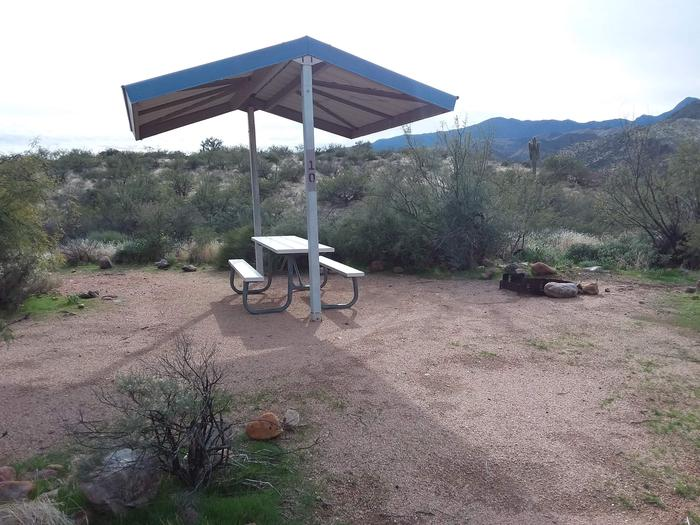 Site T10 with a picnic table, fire ring, shade structure, and parking.