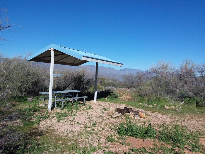 T11 Campsite at Cholla Campground with a picnic table, fire ring, shade structure, and parking.