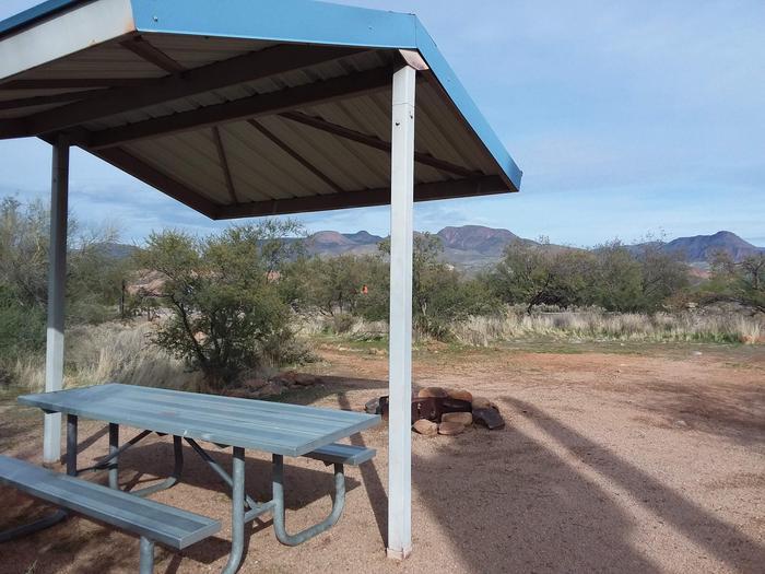 Campsite T11Campsite T11, Cholla Campground