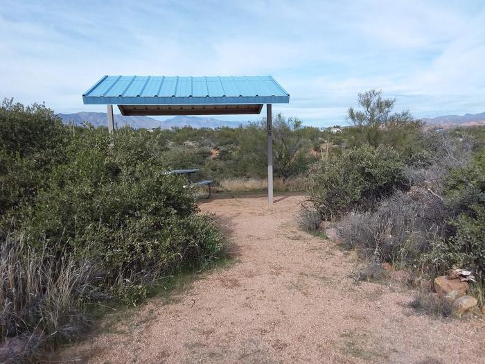 Campsite T15, Cane LoopCholla Campground