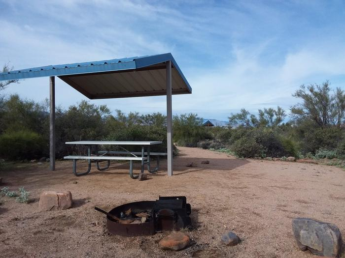 Campsite T17, Cane Loop with a picnic table, fire ring, shade structure, and parking.