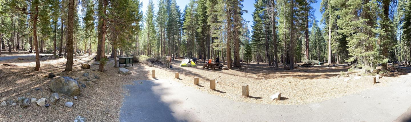 French Meadows Campsite 12