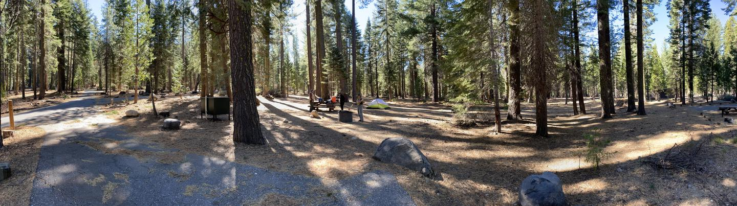 French Meadows Campsite 14