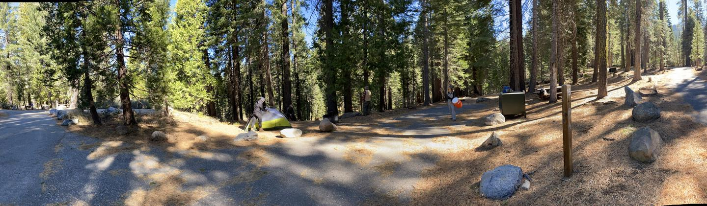 French Meadows Campsite 16