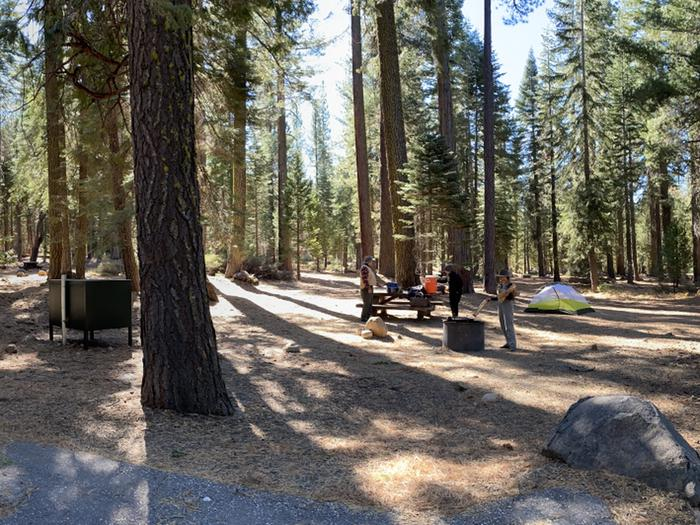 French Meadows Campground Campsite 14