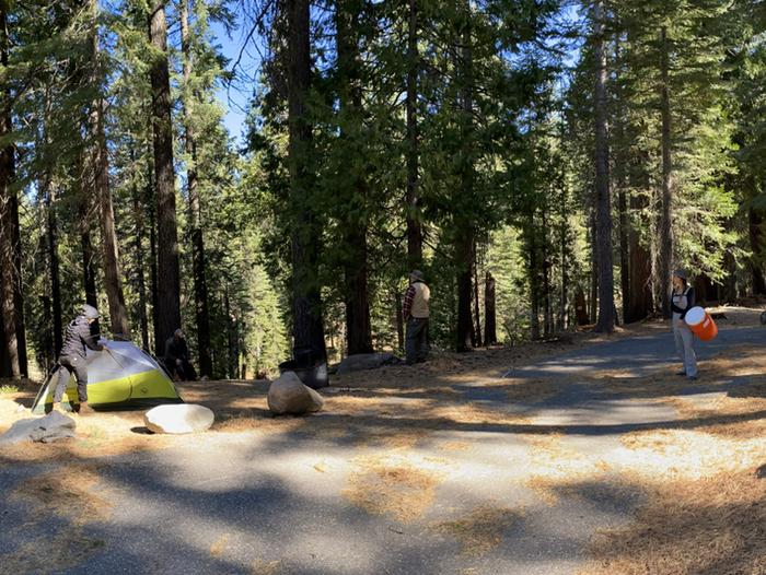 French Meadows Campground Campsite 16