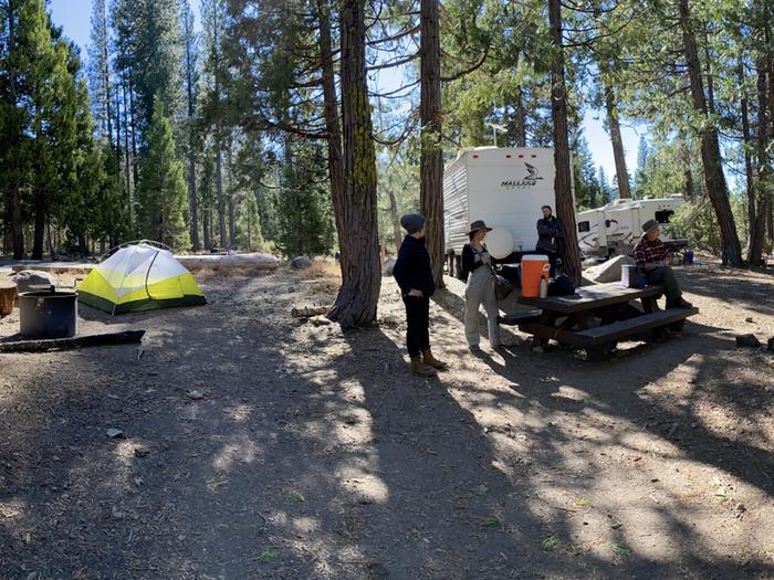 French Meadows Campground Campsite 43