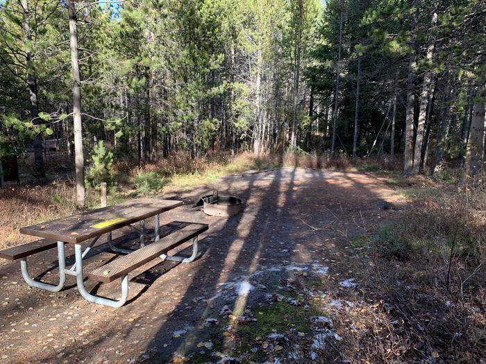 A photo of Site 50 of Loop 2 at Signal Mountain Lodge Campground with Picnic Table, Fire Pit, Shade, Food Storage, Tent Pad