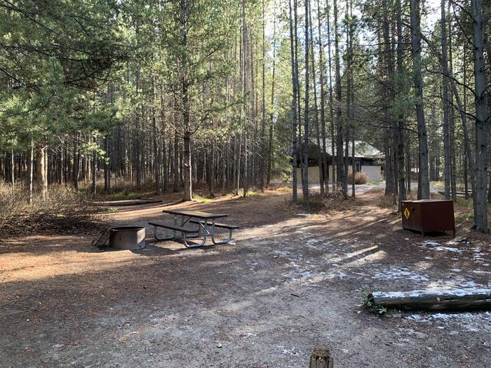A photo of Site 56 of Loop 2 at Signal Mountain Lodge Campground with Picnic Table, Fire Pit, Shade, Food Storage, Tent Pad