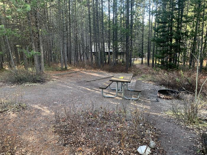 A photo of Site 64 of Loop 2 at Signal Mountain Lodge Campground with Picnic Table, Fire Pit, Shade, Food Storage, Tent Pad
