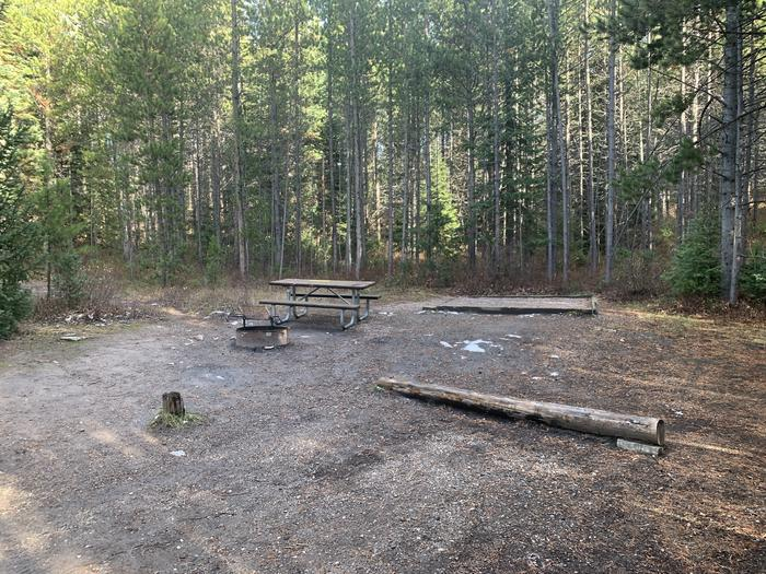 A photo of Site 60 of Loop 2 at Signal Mountain Lodge Campground with Picnic Table, Fire Pit, Shade, Food Storage, Tent Pad