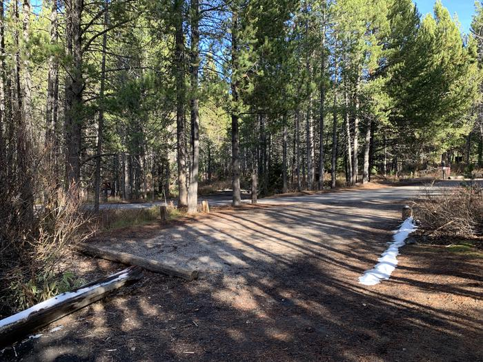 A photo of Site 49 of Loop 2 at Signal Mountain Lodge Campground with Picnic Table, Fire Pit, Shade, Food Storage