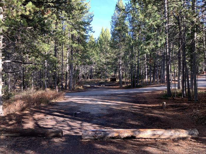 A photo of Site 48 of Loop 2 at Signal Mountain Lodge Campground with Picnic Table, Fire Pit, Shade, Food Storage