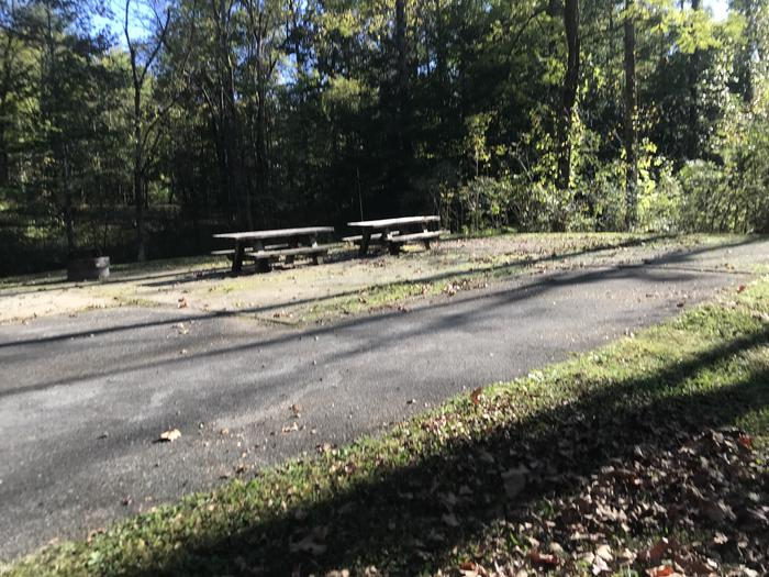A photo of Site F009 of Loop F at TWIN KNOBS CAMPGROUND with Picnic Table, Fire Pit, Shade, Tent Pad, Lantern Pole