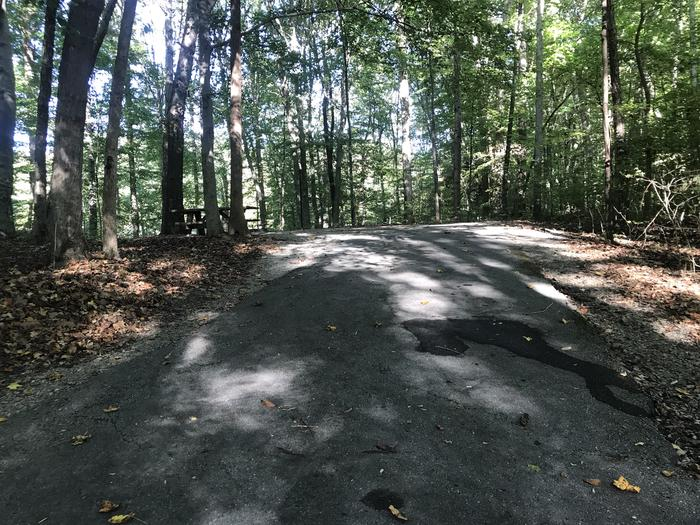 A photo of Site F014 of Loop F at TWIN KNOBS CAMPGROUND with Picnic Table, Fire Pit, Shade, Tent Pad, Lantern Pole
